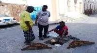 تدشين حملة تنظيف شاملة لخطوط شبكة الصرف الصحي بالتواهي
