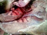 العثور على مومياء عمرها 1500 عام.. وحذاؤها يذهل علماء الآثار(صور)