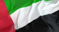 الامارات ترفض مزاعم وادعاءات الشرعية الموجهة لها حول التطورات في عدن