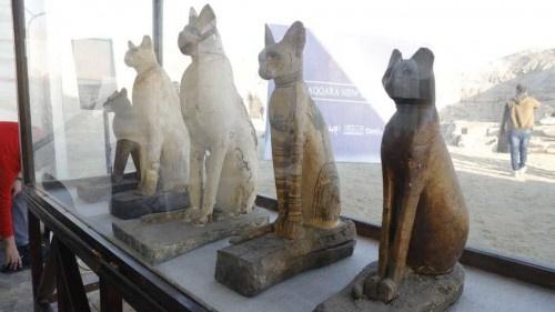 """مصر تكشف عن """"متحف كامل"""" يضم مومياوات أسود وتماسيح وطيور"""