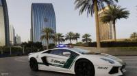 """اعتقال رئيس منظمة """"ملائكة الموت"""" الإجرامية في دبي"""