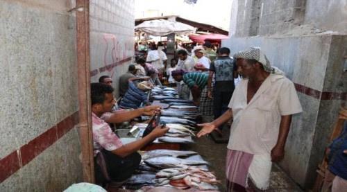 ضبط كميات من الأسماك الفاسدة بالشيخ عثمان