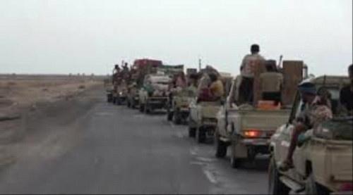 مليشيا الإخوان الارهابية تستقدم تعزيزات عسكرية كبيرة الى شقرة
