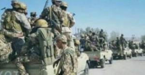 ألوية العمالقة تدفع بتعزيزات عسكرية كبيرة إلى جبهة الضالع