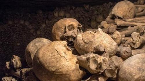 """""""اكتشاف ثوري"""" داخل جمجمة محنطة قبل 2000 عام"""